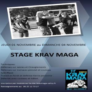 Stage Krav Maga - Novembre 2018